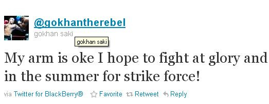 Saki w Strikeforce?