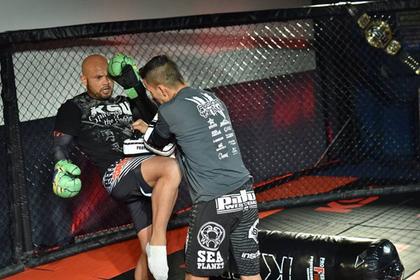 Media trening Maiquela Falcao przed KSW 33 (+video)